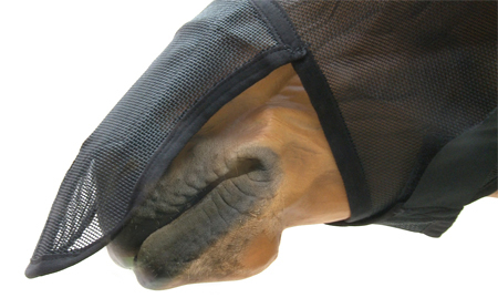 Fly_Mask_Nose_7_CU_klein